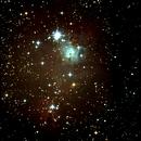 NGC2264,                                Daniele Viarani
