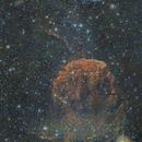 IC443 - The Jellyfish Nebula,                                WJM Observatory