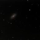 NGC 2903,                                Stephan Lenz