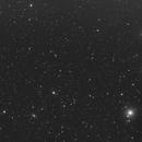 Fornax Cluster,                                David Nguyen