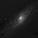 M31 in Red minus Blue light,                                Jari Saukkonen