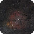 not only the elephant trunk, ic 1396,                                Gottfried Meissner