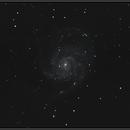 M101 Pinwheel Galaxy,                                Damien ROLLET