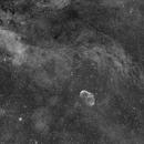 Crescent Nebula Halpha,                                Marco Favro