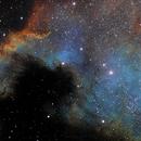 America Nebula,                                Jean-Marie Locci