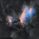 Prawn Nebula,                                Jess Carlisle