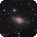 NGC3521- Bubble Galaxy - Submission to Greg Turgeon's procession competition,                                Tim Hutchison