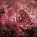 NGC 2238 Rosetta Nebula,                                Roberto Sartori