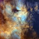 The Butterfly Nebula - Starless,                                silentrunning