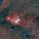 Cone Nebula,                                Poochpa