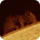 Giant Prominence 2020.05.04 Truss Refractor 228mm (FL=7.850mm) Ioptron Cem120 ASI174MM Daystar Quark Chromosphere version,                                Alessandro Bianconi