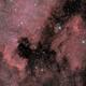 NGC7000 ... again,                                paddy36