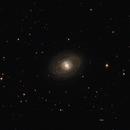 NGC 1398,                                Doug Summers