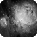 h-alpha hdr mosaic of M42 and M43,                                Andrew Lockwood