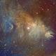 Cone Nebula/Foxfur/Christmas Tree Nebula,                                John Kroon