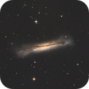 NGC 3628 Hamburger Galaxy,                                Tim Gillespie