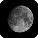 Lunar Day 13,                                Tom Gray