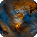 Cone and Fox Fur Nebulae in SHO (Starless version),                                Tommy Lease