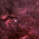 Sadr region of Cygnus with DSLR,                                Dom Schepis