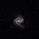 Messier 61 mit Supernova 2020jfo,                                Günther Eder