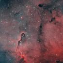 Elephant Trunk (IC 1396) - HOO,                                Marco Rapino