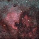 NGC 7000 + Pelican Nebula,                                AC1000
