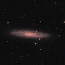 NGC253,                                Federico Margalef (Iko)