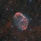 Crescent Nebula - NGC 6888,                                Robert Eder