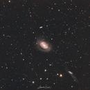 Ngc 4725 Seyfert Galaxy,                                Alexander Grasel