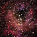 Nebulosa Roseta,                                Metalyard