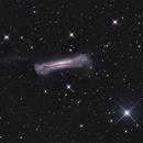 NGC3628,                                Dean Schwartzenberg