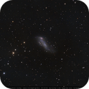 Coddington's Nebula IC2574,                                Michael Feigenbaum