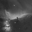 IC434 & B33,                                LAMAGAT Frederic