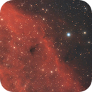 California Nebula,                                Steve Siedentop