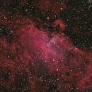 Eagle Nebula,                                Charles Ward