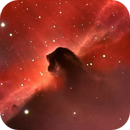 B33 The Horsehead nebula,                                Bob Scott