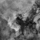 NGC7000 (The Gulf of Mexico),                                Jan Eliasek