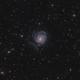 M101 - Wide Field,                                Robert Eder