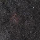 IC 1396,                                Steffen Elste