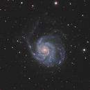 M101 the Pinwheel Galaxy,                                Pierre Tremblay
