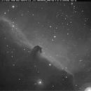 IC 434 Horsehead Nebula,                                Bruce Donzanti
