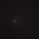 Comet C/2013 US10 Catalina,                                Michael Southam