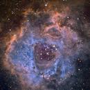 Rosette nebula,                                dr_klahn