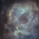 C49-Ha-SHO (modified)-Starless,                                Adel Kildeev