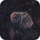The Crescent Nebula: RGB and HA Combined,                                Alex Roberts