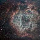 NGC 2237 Rosette Nebula,                                Txema Asensio