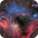 Orion Widefield,                                David Dvali