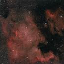 North American Nebula,                                Aaron