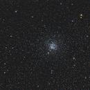 M11 - The 'Wild Duck' cluster,                                OrionRider