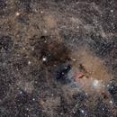 NGC1333 135mm field,                                Manel Martín Folch